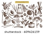 vector floral collection.... | Shutterstock .eps vector #609626159