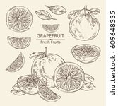 collection of grapefruit and... | Shutterstock .eps vector #609648335