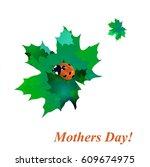 ladybug   Shutterstock .eps vector #609674975