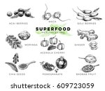 vector hand drawn superfood... | Shutterstock .eps vector #609723059
