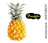 Pineapple Watercolor Hand Draw...