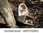 Small photo of destroyed toiled bowl