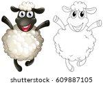 doodles drafting animal for... | Shutterstock .eps vector #609887105