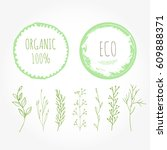 set of green organic labels... | Shutterstock .eps vector #609888371