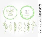 set of green organic labels... | Shutterstock .eps vector #609888371