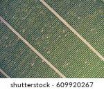 aerial top view on extensive...   Shutterstock . vector #609920267