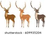 A Set Of Deer For Your Design....