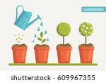 planting process. how to grow...   Shutterstock .eps vector #609967355