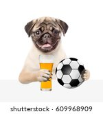 Funny Puppy Holding A Soccer...