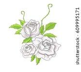 illustration flower spring... | Shutterstock . vector #609995171