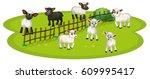 White Sheeps And Black Sheeps...