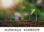 agriculture. growing plants.... | Shutterstock . vector #610083239