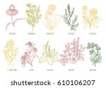 vector vintage set of ten... | Shutterstock .eps vector #610106207