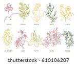 vector vintage set of ten... | Shutterstock .eps vector #610106207