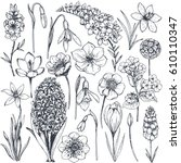 collection of hand drawn spring ... | Shutterstock .eps vector #610110347