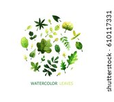set of watercolor leaves and... | Shutterstock . vector #610117331