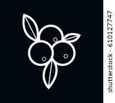 cranberry icon vector... | Shutterstock .eps vector #610127747