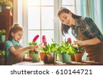 cute child girl helps her... | Shutterstock . vector #610144721