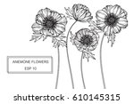 drawing flowers. vector... | Shutterstock .eps vector #610145315