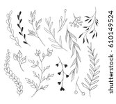 branches and leaves  doodle...   Shutterstock .eps vector #610149524
