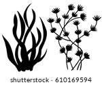 sea weed black silhouettes ... | Shutterstock .eps vector #610169594
