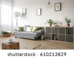 cozy living room with sofa ... | Shutterstock . vector #610213829