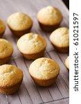 freshly baked vanilla muffins... | Shutterstock . vector #61021597