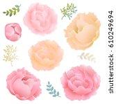 flowers peony  | Shutterstock . vector #610249694