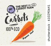 poster with sketched carrot... | Shutterstock .eps vector #610290641