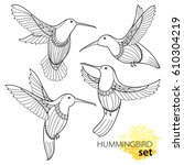 vector set with flying... | Shutterstock .eps vector #610304219