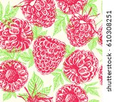 hand drawn raspberries seamless ... | Shutterstock .eps vector #610308251