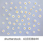white chamomiles on a gray... | Shutterstock . vector #610338644