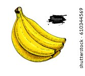 banana bunch drawing. isolated... | Shutterstock . vector #610344569
