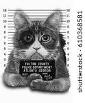portrait cat illustration  hand ...   Shutterstock . vector #610368581