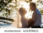 wedding. a loving couple on the ... | Shutterstock . vector #610398821