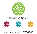 beauty vector flowers design... | Shutterstock .eps vector #610784909