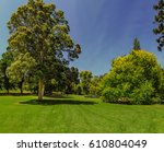 immersed in the green of... | Shutterstock . vector #610804049