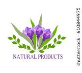 natural  organic food  bio  eco ... | Shutterstock .eps vector #610844975