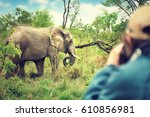 photographer taking pictures of ... | Shutterstock . vector #610856981