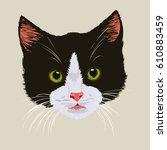 Stock vector cute black kitten portrait of black cute tabby kitten on light background 610883459