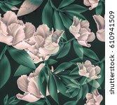 seamless tropical flower  plant ... | Shutterstock . vector #610941509