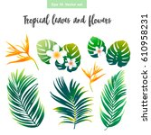 tropical leaves and flowers set ... | Shutterstock .eps vector #610958231