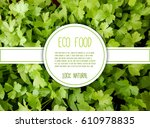 eco  natural  organic food... | Shutterstock .eps vector #610978835