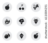 set of 9 editable berry icons.... | Shutterstock .eps vector #611004251