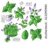set illustration with mint and... | Shutterstock .eps vector #611090984