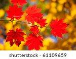Autumn Landscape. Bright...