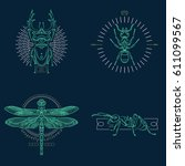 set of thin line insects icons. ... | Shutterstock .eps vector #611099567
