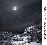 winter moonlit night | Shutterstock . vector #61117351