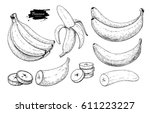 banana set drawing. isolated... | Shutterstock . vector #611223227