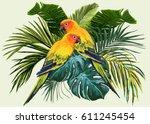 Vector Tropical  Composition...
